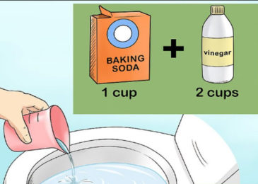 How to repair toilet flushing system