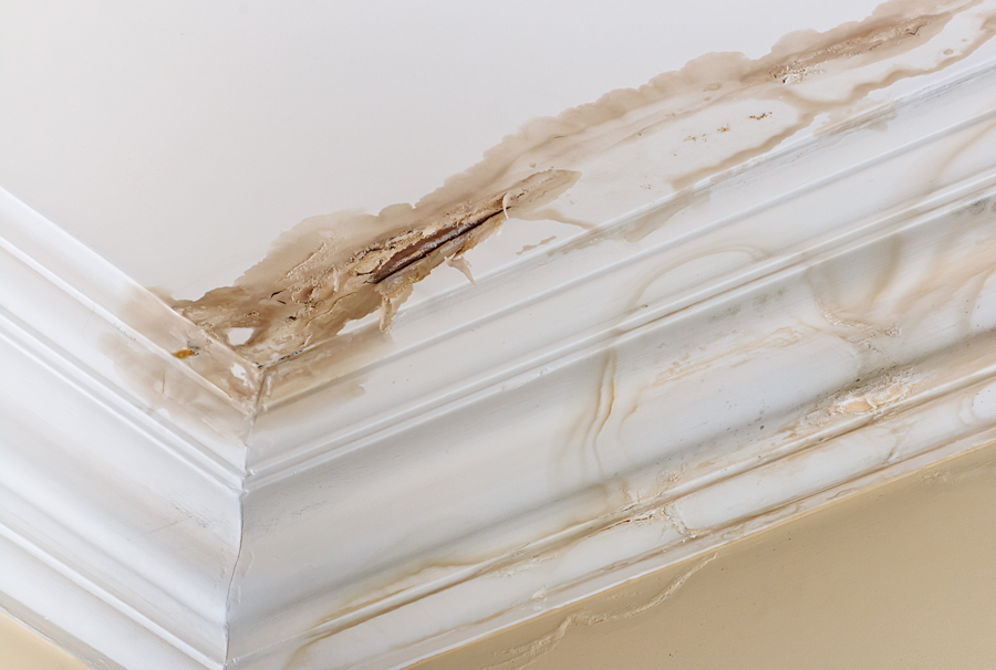 how to find leak in wall or ceiling