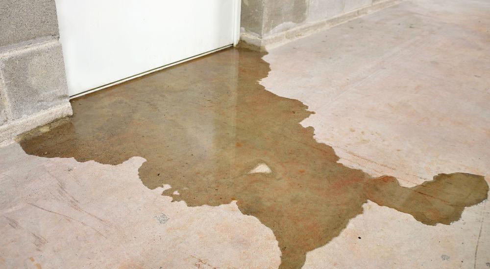 basement water damage basement flood
