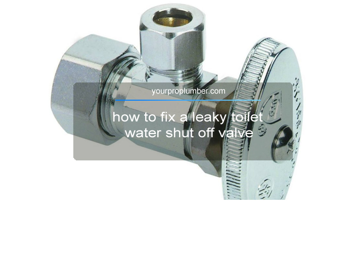 How To Fix A Leaky Toilet Water Shut Off Valve Yourproplumber