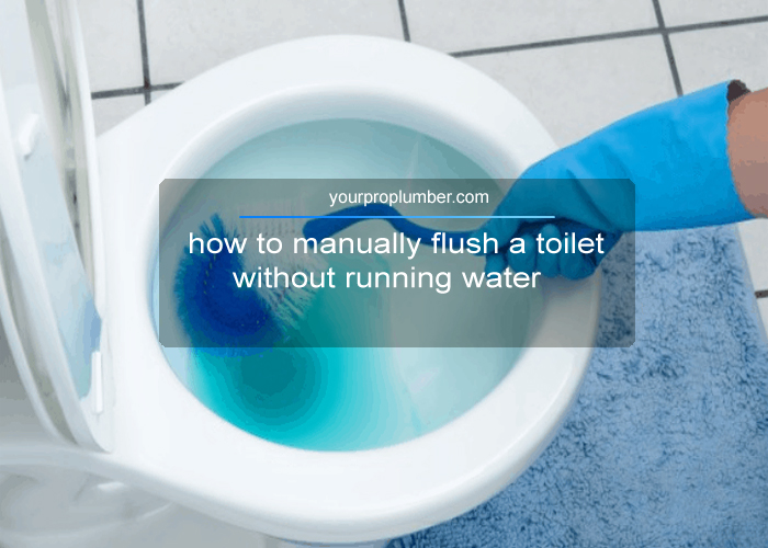 How to Manually Flush a Toilet without Running Water ...