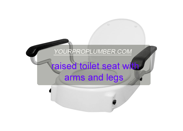 raised toilet seat with arms and legs