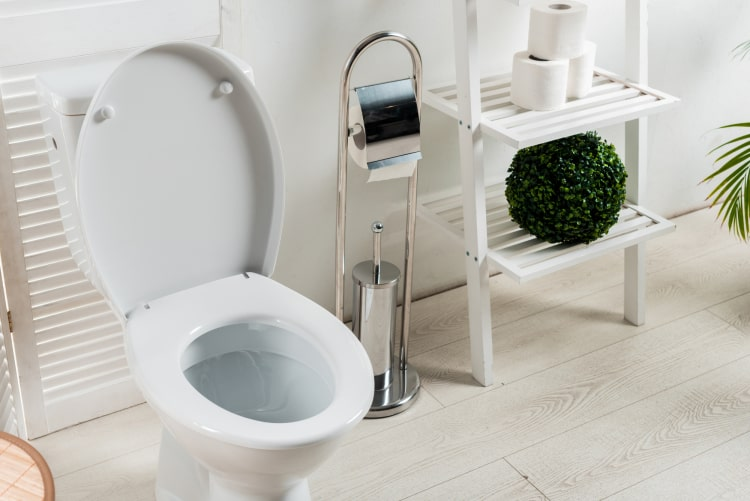 Macerator Toilets